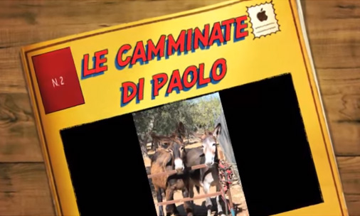 Le camminate di Paolo