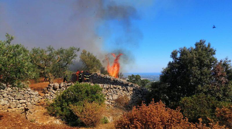 Un incendio divora i colli